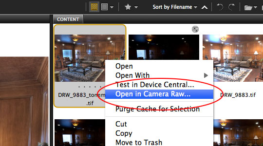 Open the HDR image in Adobe Camera Raw